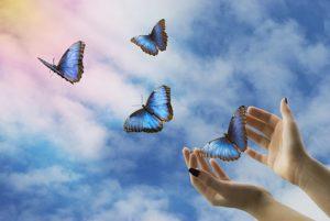 farfalle blu in volo